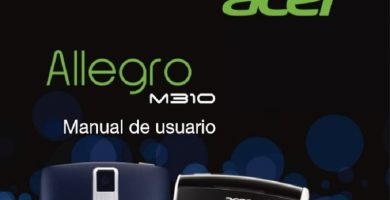 m310 acer allegro manual en español.
