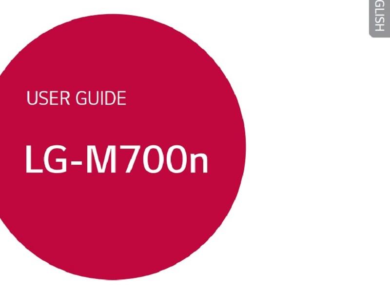 LG Q6 LGM700N.