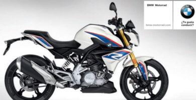BMW G 310 R pdf.